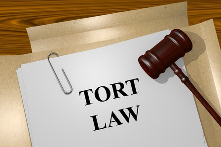 What is a TORT???