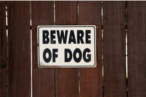 Beware of Dog bites